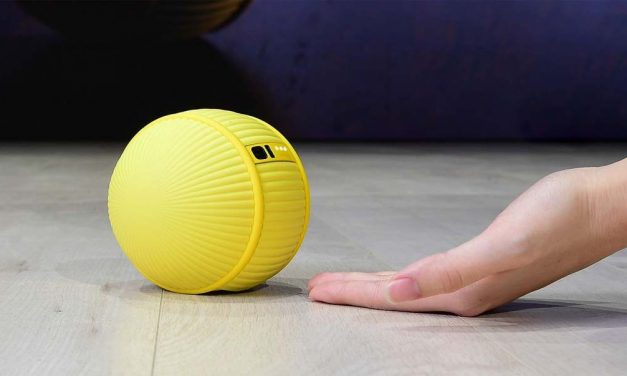 Inovacija: Bali je mali kućni robot!